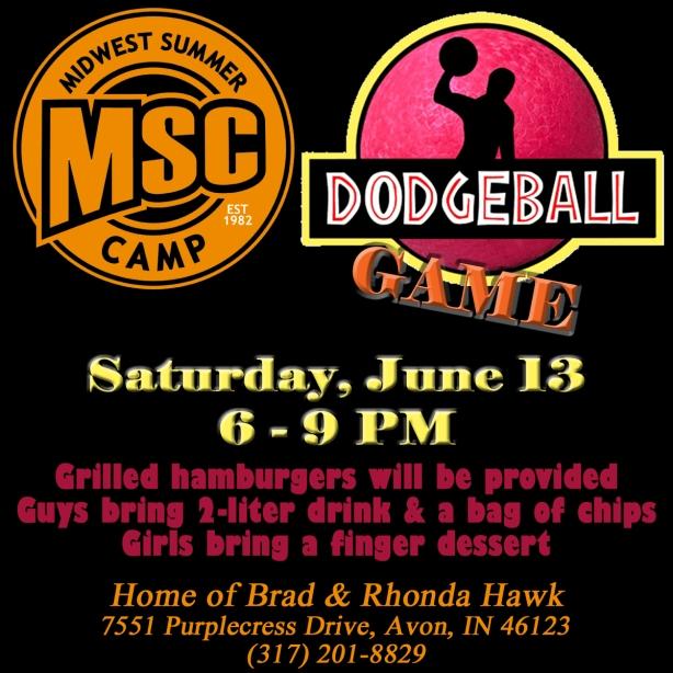 MSC Dodgeball 2015